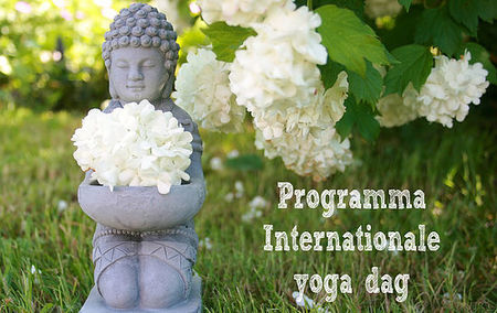 Internationale Yoga Dag evenementen overzicht